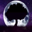 Les bienfaits de l'astrologie